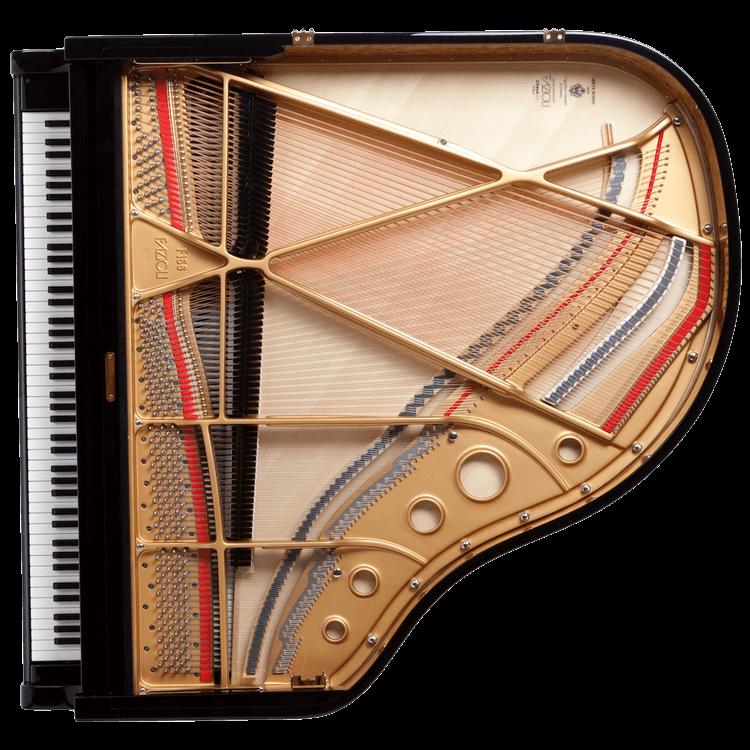 Fazioli F156 piano inside