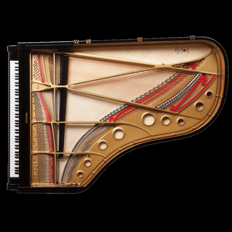 Fazioli F228 piano strings