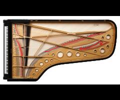 Fazioli F308 massive soundboard
