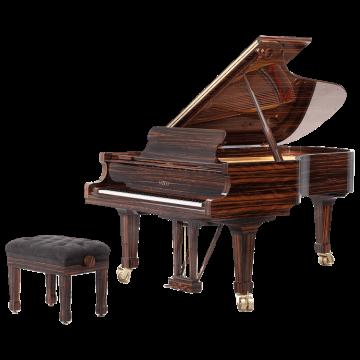 Fazioli model Macassar piano