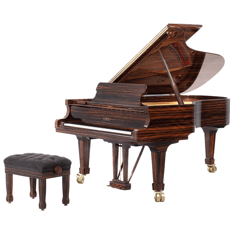 Fazioli model Macassar piano