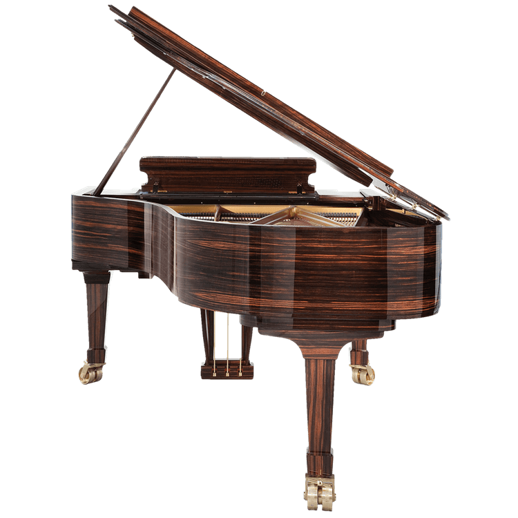 Fazioli high gloss Macassar piano