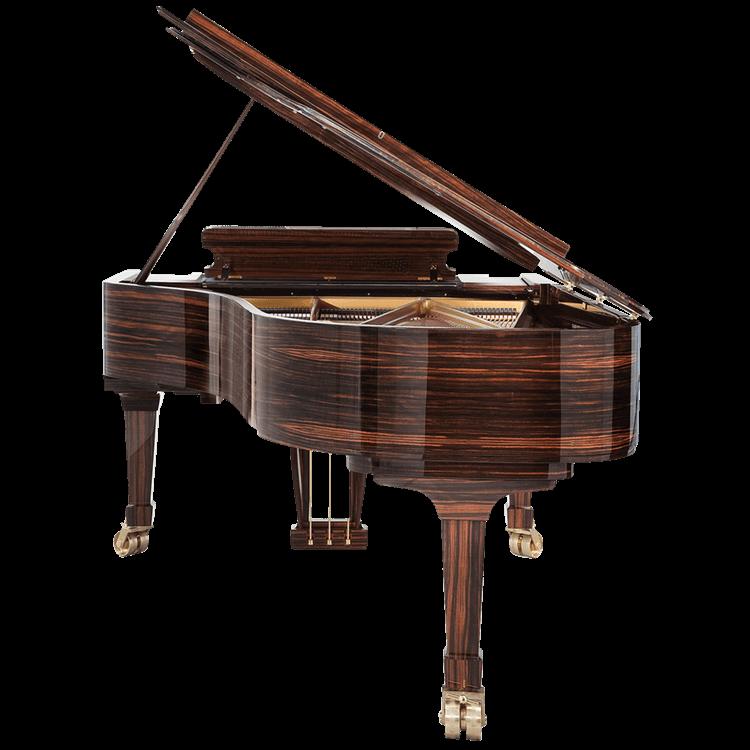 Fazioli high gloss Macassar piano