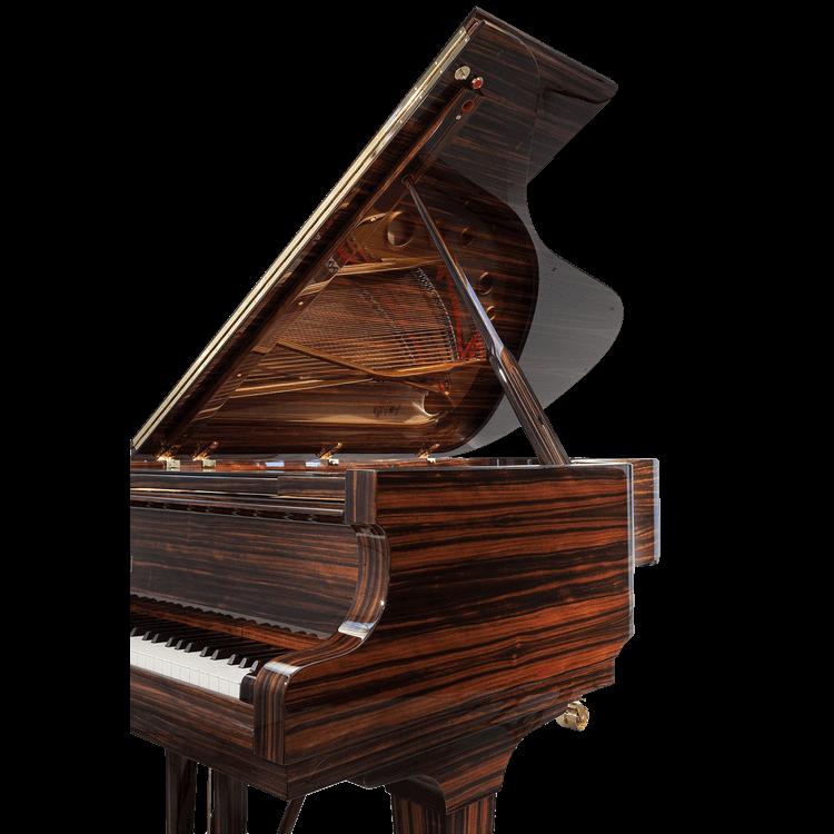 Fazioli Macassar open piano lid