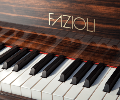Fazioli Macassar piano keys