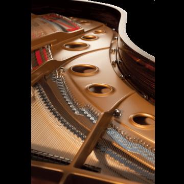 Fazioli Macassar piano inside
