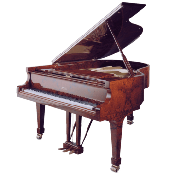 Fazioli piano in Amboina finish