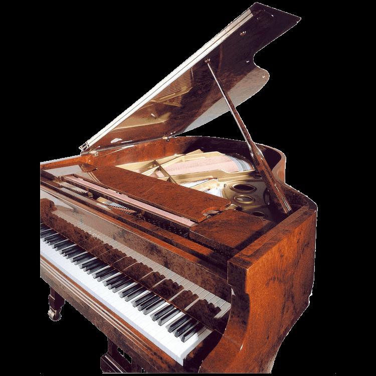 Fazioli Model Amboina piano