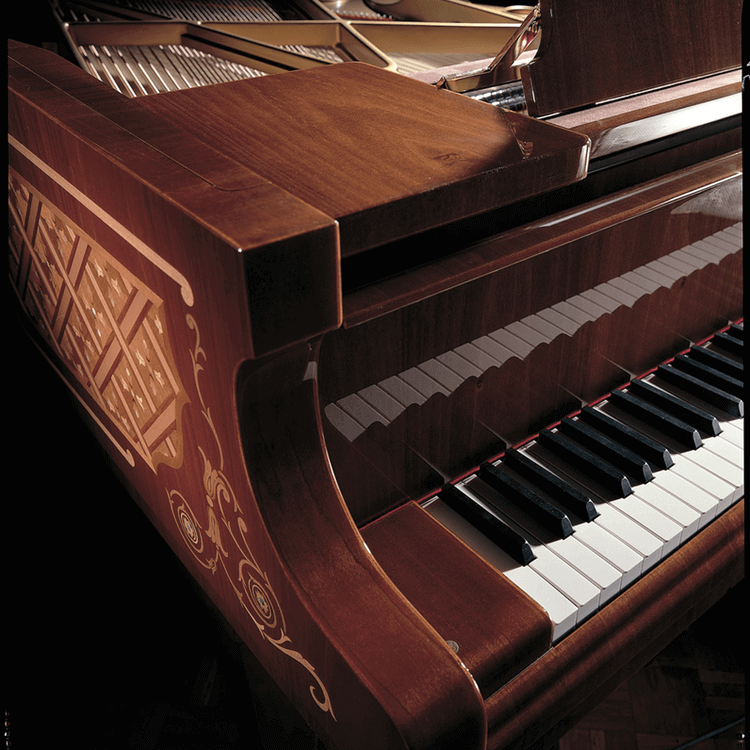 Fazioli Model Brunei piano