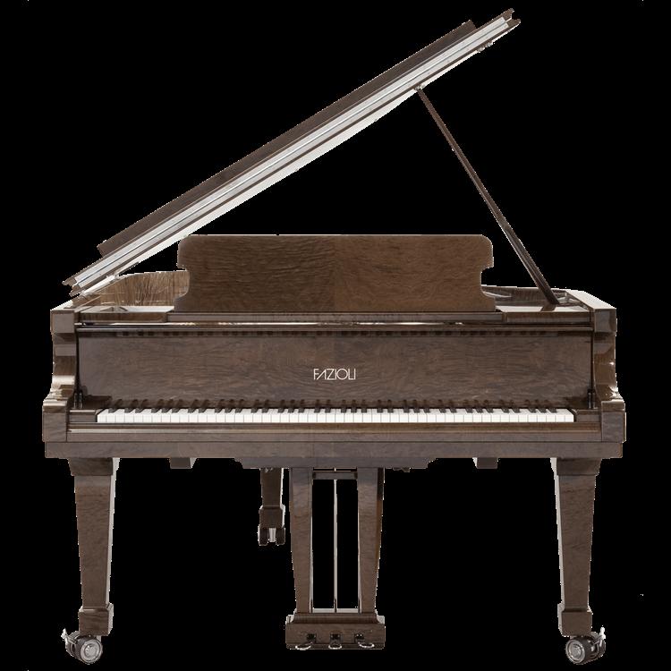 Fazioli Tamo Burl piano front