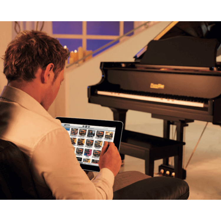 Pianodisc self playing system