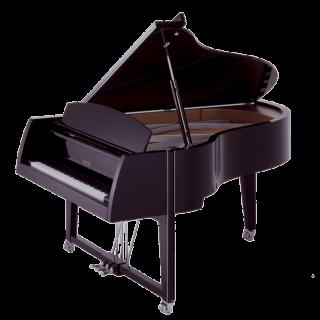 Sauter Vivace piano