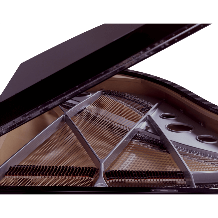 Sauter Model Vivace piano with silver plate