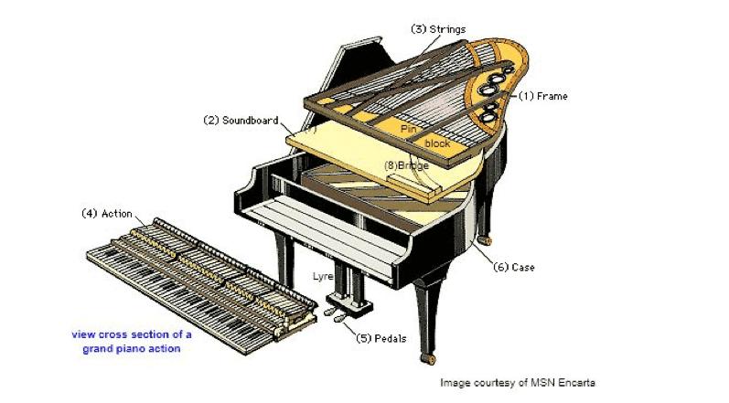 baby grand piano interior parts