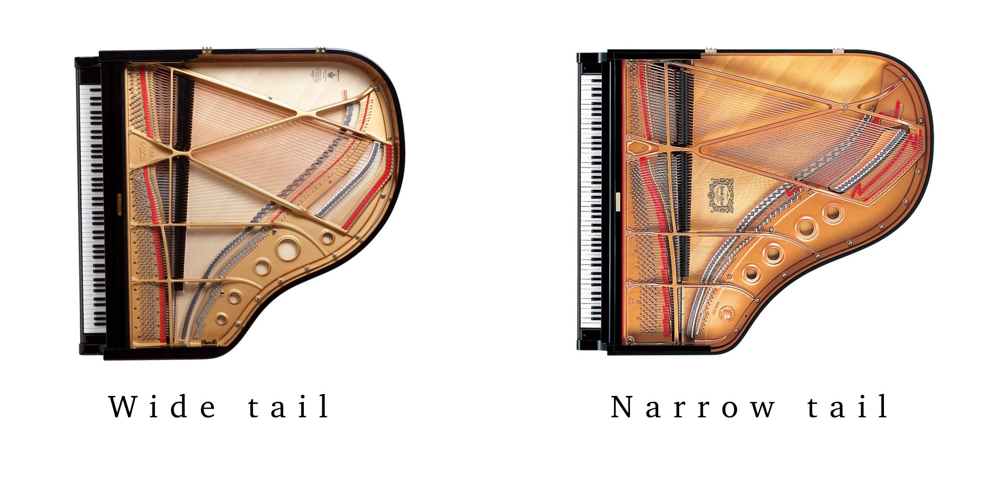 Baby Grand Piano Dimensions Measuring A Piano Euro Pianos