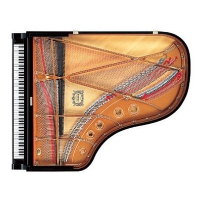 tail of baby grand piano