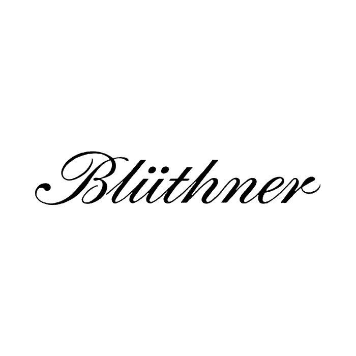 Best Piano Brands – Bluthner
