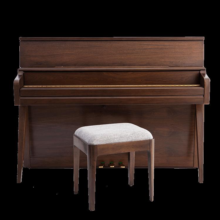 Echo™ modern piano closed keys