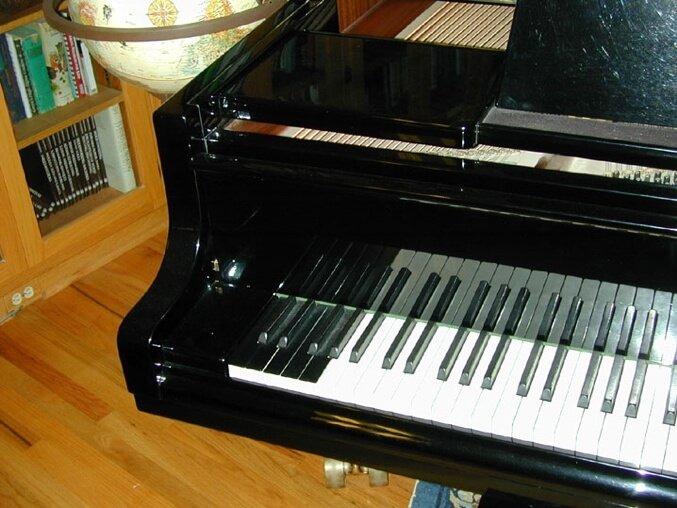 Bosendorfer extra piano keys