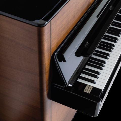 sauter rhapsody piano